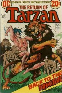 DC TARZAN (1972 Series) #221 VG
