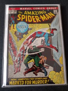 THE AMAZING SPIDER-MAN #108