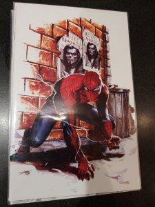 Friendly Neighborhood Spider-Man #1 virgin scorpion comics variant Dell Otto
