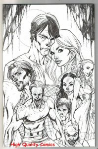 TRUE BLOOD #1, NM, Vampire, Retailer Incentive Variant, 2010, more in store