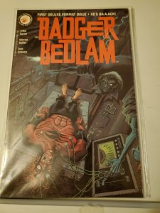 Badger Bedlam #1 (1991)