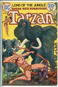 TARZAN #229 1974-DC-EDGAR RICE BURROUGHS-JOE KUBERT JUNGLE ART-fn