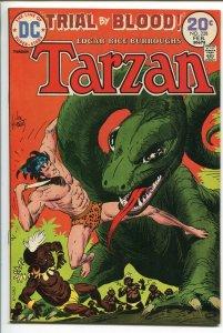 TARZAN #228 1974-DC-EDGAR RICE BURROUGHS-JOE KUBERT JUNGLE ART-vf