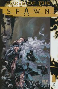 Curse of the Spawn #22 FN; Image | save on shipping - details inside