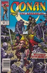 Conan the Barbarian #252