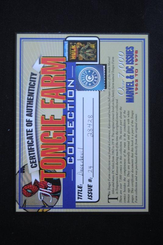 Daredevil 24, 6.0, Tongie Farm Collection