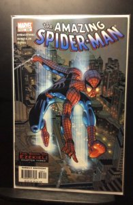 The Amazing Spider-Man #508 (2004)