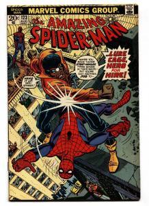 AMAZING SPIDER-MAN #123-MARVEL COMICS-fn-Luke Cage cover