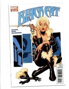 Black Cat #2 mini-series - Amanda Conner Cover - 2010 - (-Near Mint)