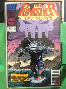 The Punisher #56 The Final Days