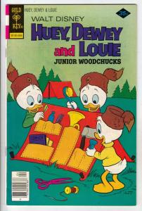 Huey Dewey and Louie Junior Woodchuks #49 (Apr-78) FN/VF High-Grade Huey Dewe...
