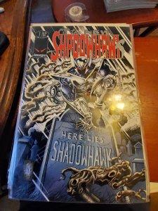 The New Shadowhawk #1 (1995)