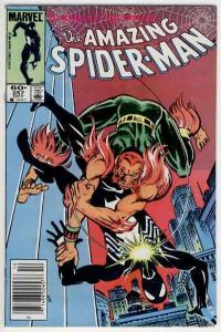 SPIDER-MAN #257, VF, 2nd Puma, Romita, Amazing, 1963, more ASM in store