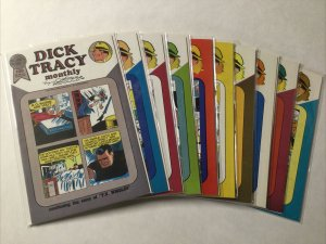 Dick Tracy Monthly 20-29 Lot Set Run Nm- Near Mint- Blackthorne