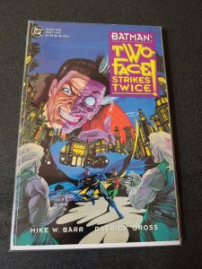Batman Two-Face Strikes Twice Book #2 DC Graphic Novel Robin Mike W Barr