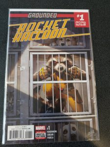 ​Grounded Rocket Raccoon #1 NM