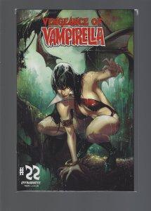 Vengeance of Vampirella #22 (2021) Cover C