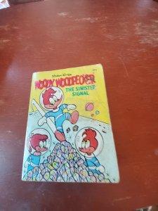 Woody Woodpecker 1969