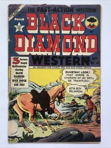 Black Diamond Western 47   (Detached Cover)