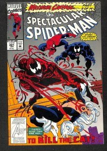 The Spectacular Spider-Man #201 (1993)