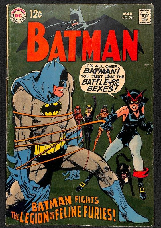 Batman #210 Catwoman Neal Adams Cover!