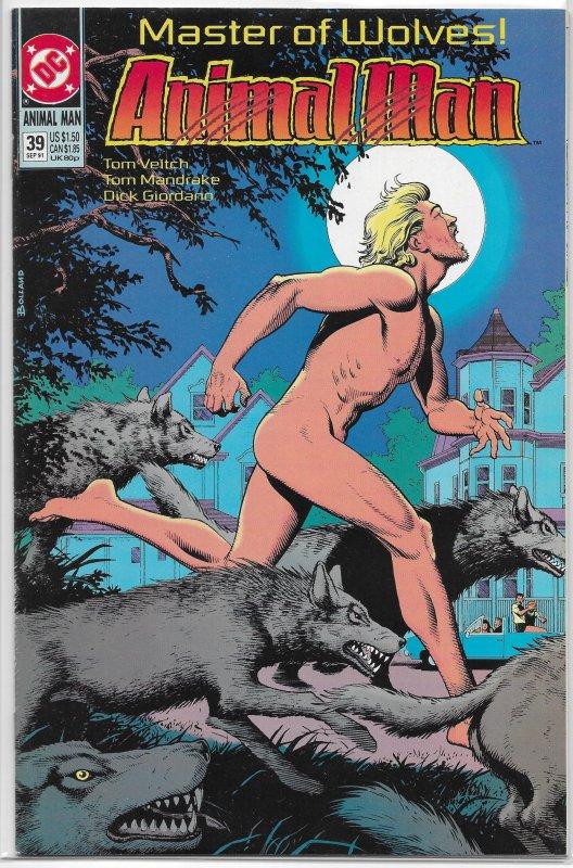 Animal Man (vol. 1, 1988) #39 FN Tom Veitch/Steve Dillon, Bolland cover