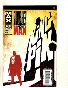 Lot Of 12 MAX Punisher Marvel Comic Books # 1 2 3 4 5 6 7 8 9 10 11 12 MAX RP6