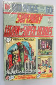 Superboy #202 1st Series 100 Page Giant 2.0 cover half detached (1974)