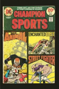 DC Comics Champion Sports Vol 1 No 2 January 1974