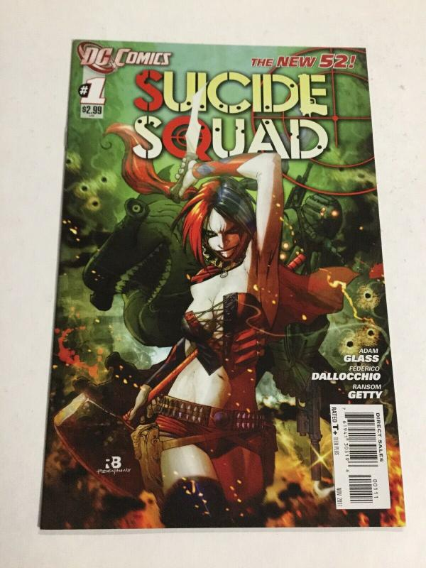 Suicide Squad 1 Nm Near Mint DC Comics New 52