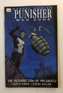 PUNISHER WAR ZONE THE RESURRECTION OF MA GNUCCI MARVEL COMICS TPB SOFT COVER