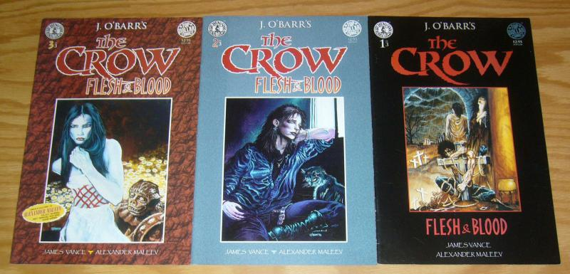 the Crow: Flesh & Blood #1-3 VF/NM complete series - j. o'barr  alexander maleev