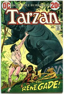 TARZAN of the APES #216, FN, Edgar Rice Burroughs, Joe Kubert,1972,more in store