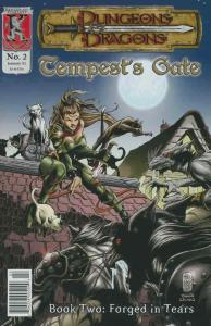 Dungeons and Dragons: Tempest's Gate #2 FN; Kenzer and Company | save on shippin