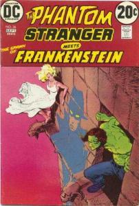 Phantom Stranger (1969 series) #26, Fine+ (Stock photo)