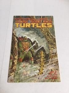 Teenage Mutant Ninja Turtles 37 Nm Near Mint