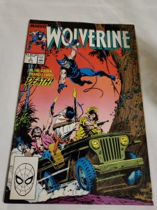 Wolverine 5 Very Fine/Near Mint  Art by John Buscema