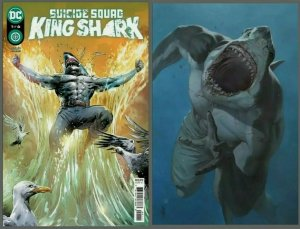 Suicide Squad King Shark #1 Cover A& B Variant Set  2021 NM