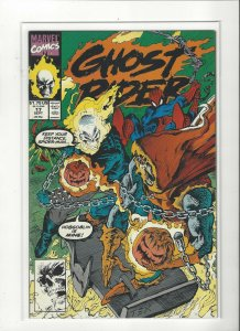 Ghost Rider (1990 series) #17 NM Near Mint condition. Marvel comics