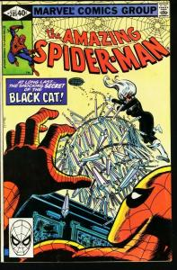 AMAZING SPIDER-MAN #205-1980-BLACK CAT-MARVEL-fine FN
