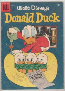 Donald Duck #41 (May-55) VG+ Affordable-Grade Donald Duck