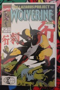 Wolverine 28 NM