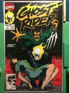 Ghost Rider #7 vol 2