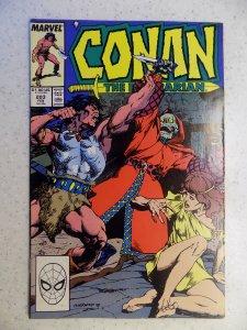 CONAN THE BARBARIAN # 203