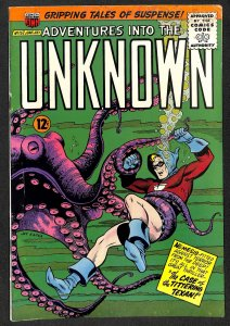 Adventures into the Unknown #157 (1965)