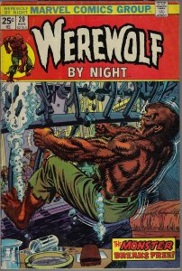 Werewolf by Night #20 (Marvel, 1974) F