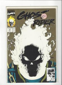 Ghost Rider Vol 2(1990) #15  Gold Print Glow in the Dark CoverNM