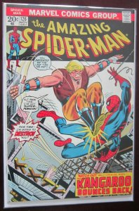 The Amazing Spider-Man h2o damage #126 5.0 VG/FN (1973)