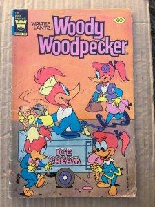 Walter Lantz Woody Woodpecker #196
