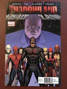SHADOWLAND # 2  VF NEWSSTAND VARIANT Oct 2010 Marvel Comics RARE!